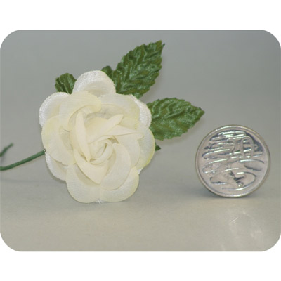 Ivory Medium Open Rose
