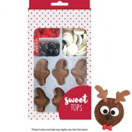 Reindeer decorating kits