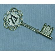 Silver 21st Key Fancy