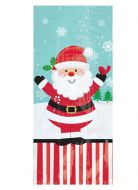 Jolly Santa Small Cello Bags